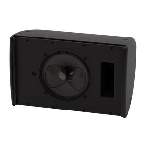 Martin CDD10 Compact Coaxial Differential Dispersion Speaker